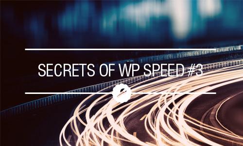 Secrets of WordPress Speed Unlocked: Create Your Own Theme -